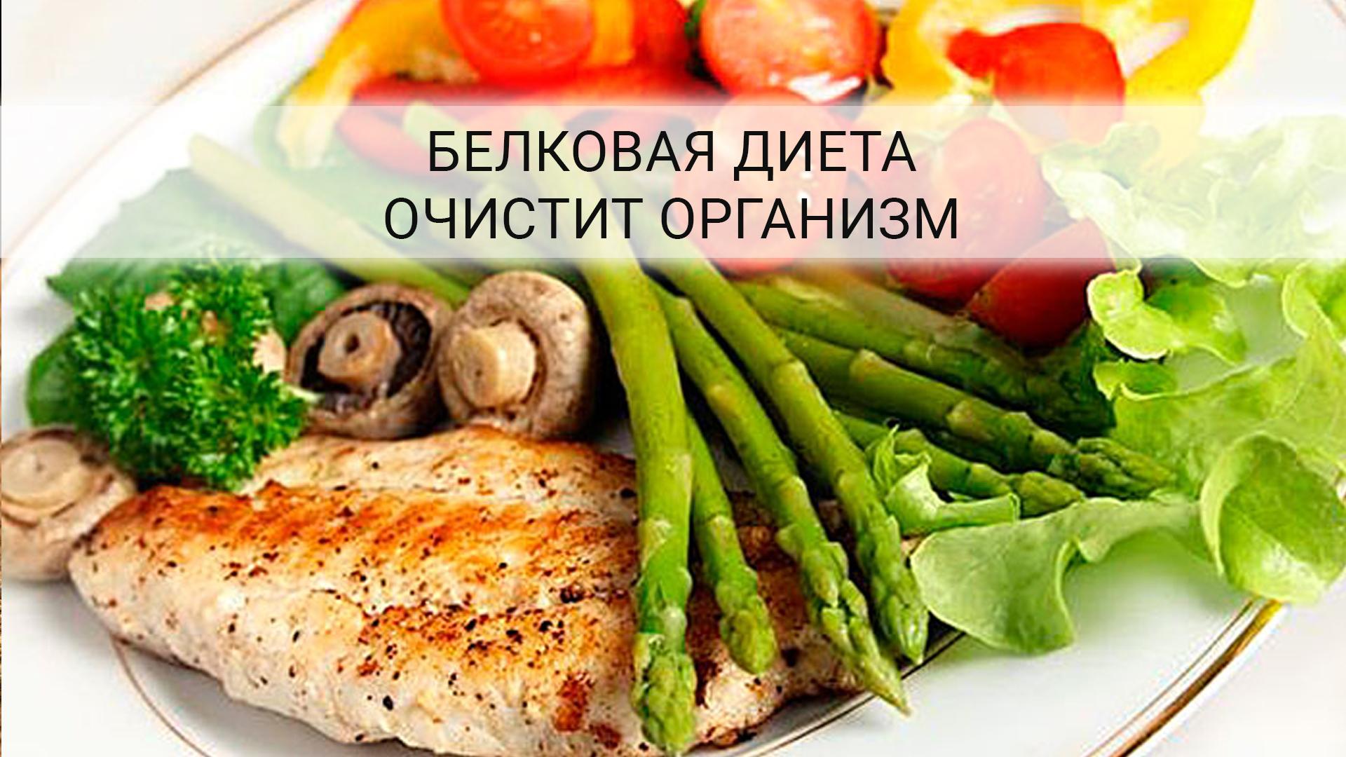 Белковое меню для похудения