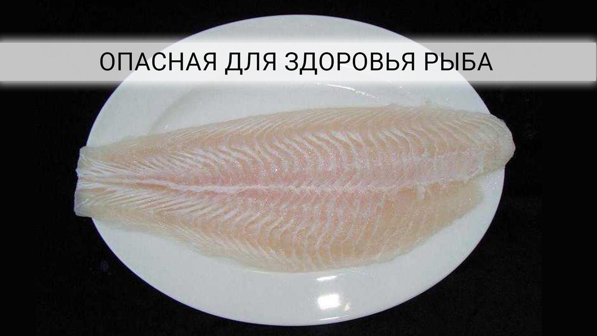 Какую рыбу опасно есть