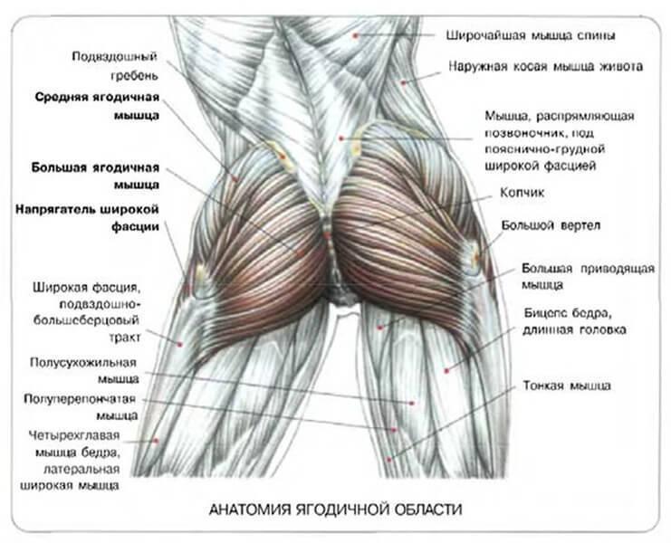 content_prisedaniya1_1__econet_ru