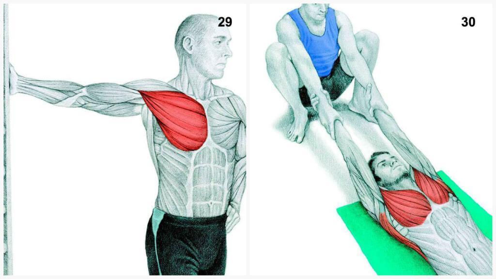 Для чего нужна растяжка мышц
