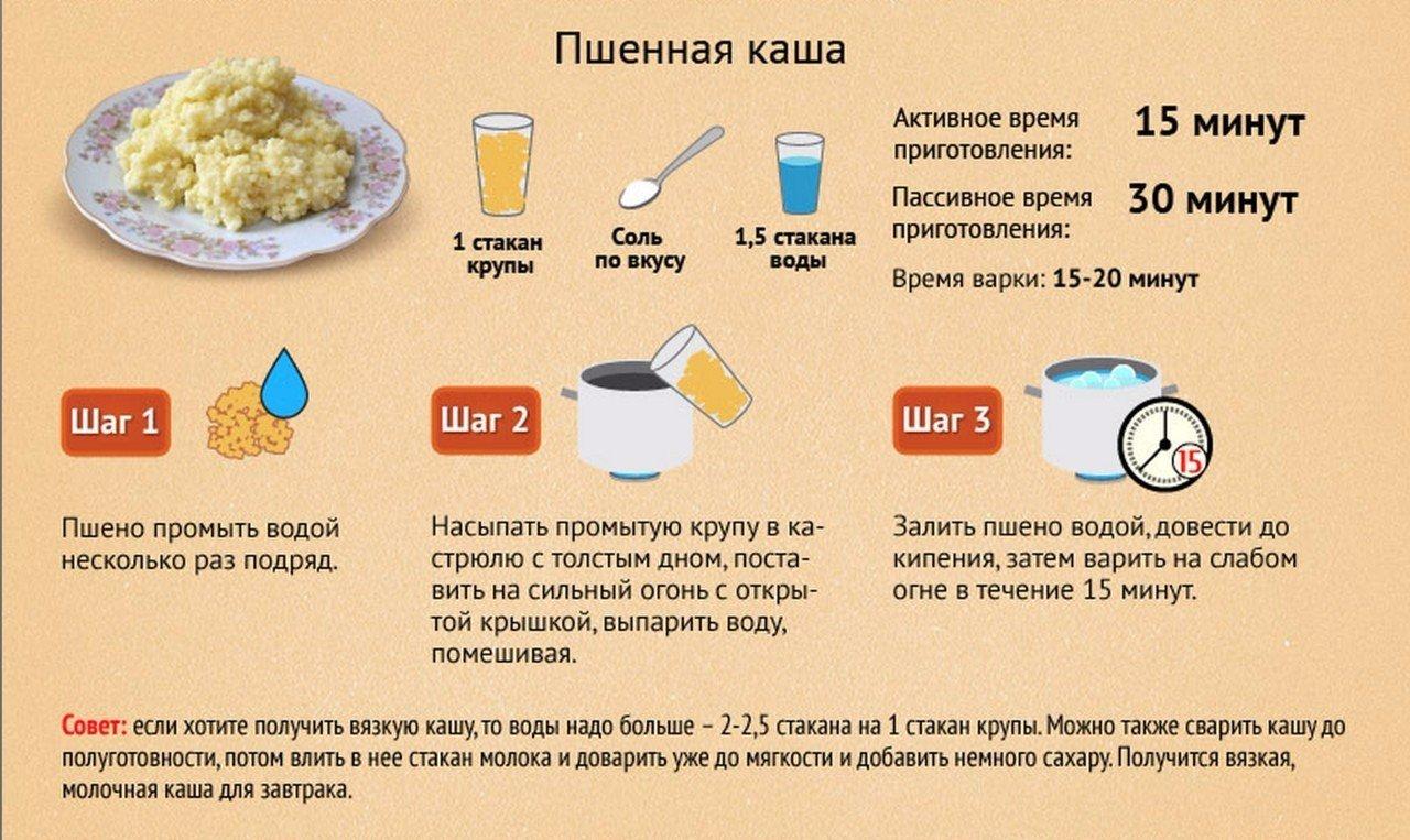 Как правильно варить кашу овсяную на молоке