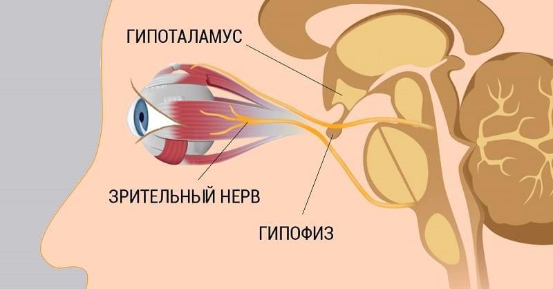 8 простых советов, чтобы сохранить и восстановить здоровье глаз
