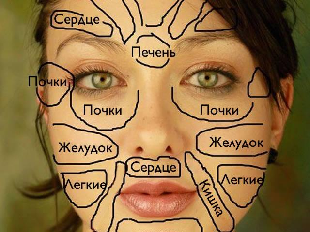 Ваше лицо расскажет обо всех болезнях организма. Посмотрите на эту карту...