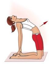 Тренировки во время менструального цикла: программа занятий для девушек