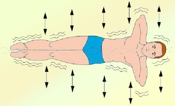 Упражнение «золотая рыбка» для спины: техника выполнения