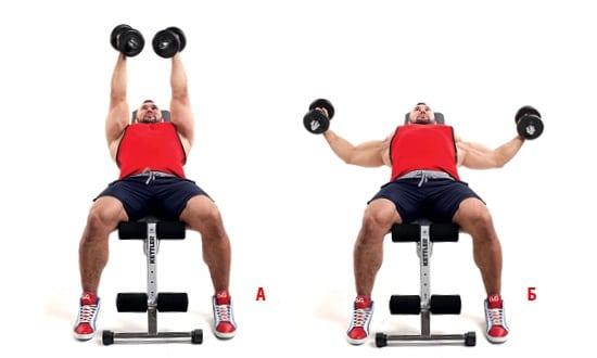 Упражнения для подтяжки грудных мышц: для девушек