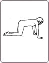 Упражнения «бодифлекс» для начинающих в домашних условиях