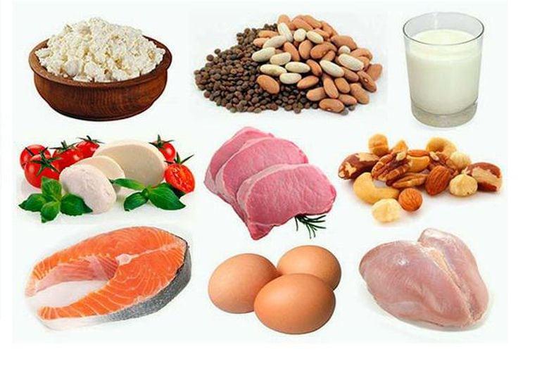 Продукты с большим содержанием белка: таблица и полезные советы