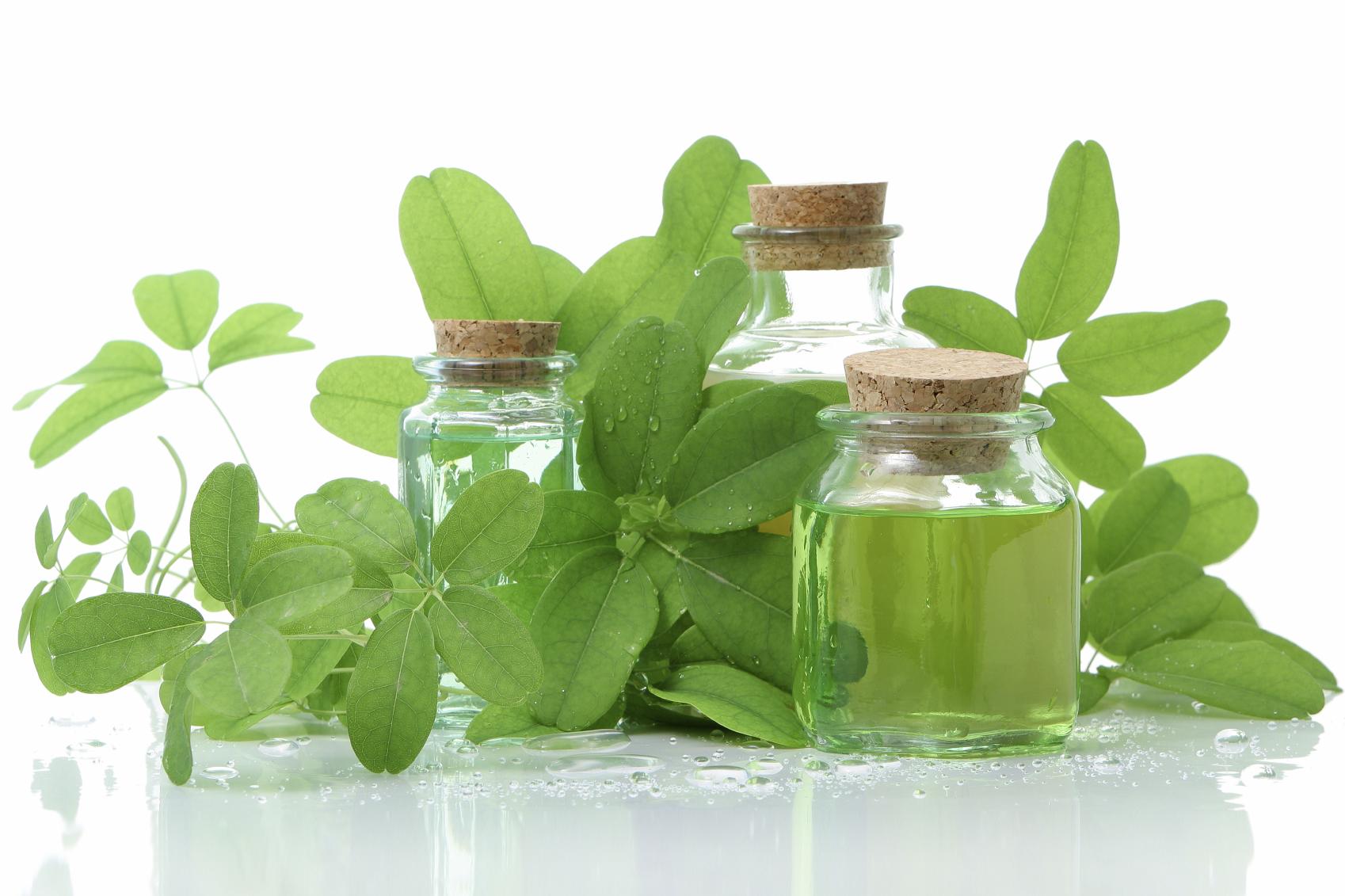 Лучшие травы для похудения сжигающие жир