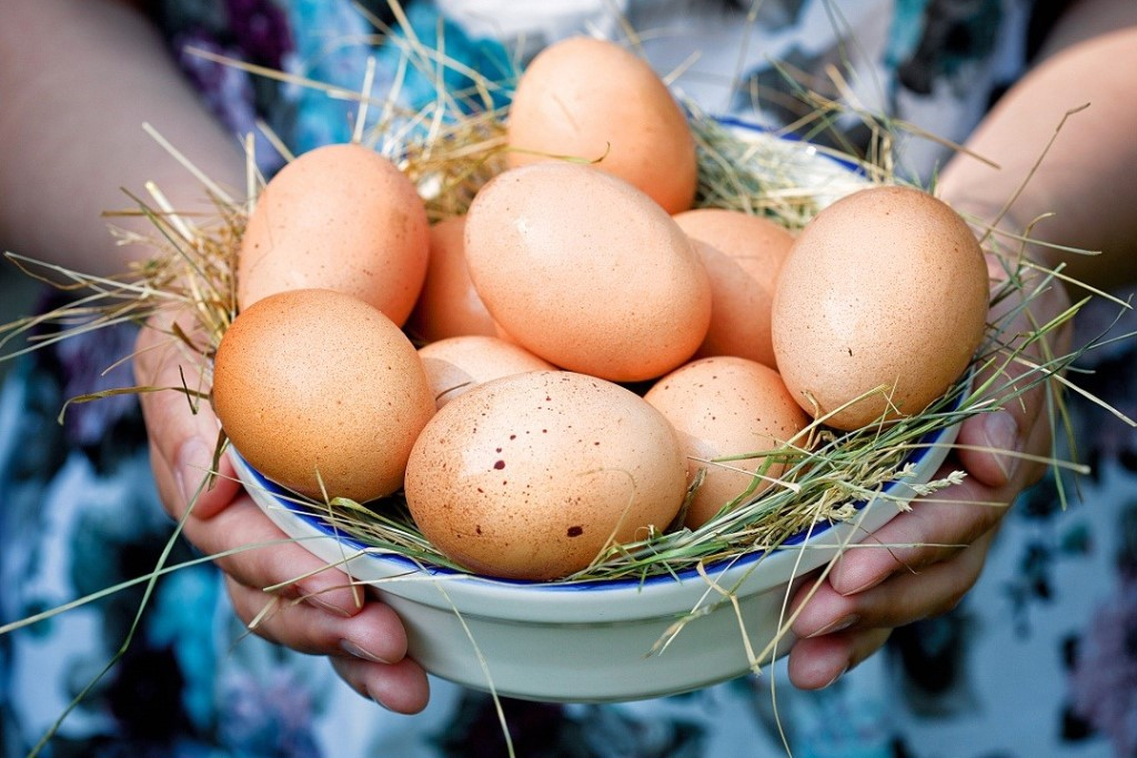 Как проверить свежесть яиц в воде и другие способы проверки?